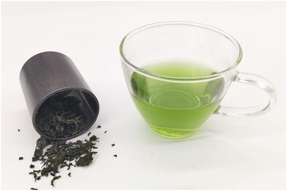 构树茶.jpg